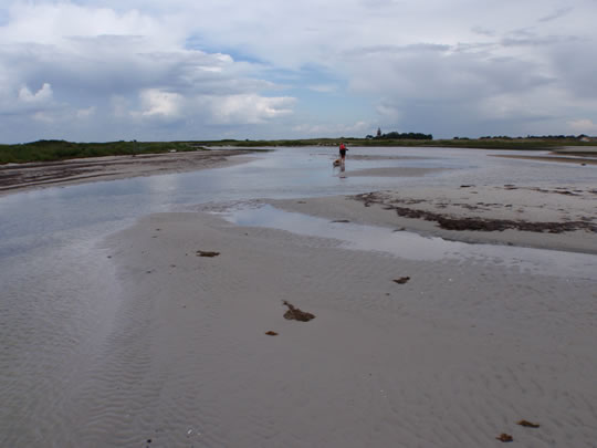 To cross Falsterbo ness we had to wade with the kayaks in dirty smelling water