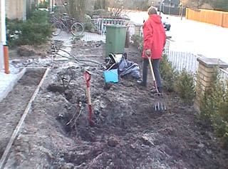 Front Garden Removal Of Roots